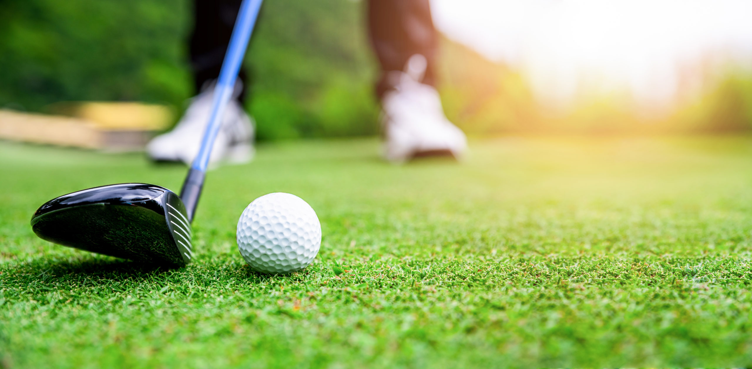 Additional Option per Attendee - Scholarship Golf Tournament Entry
